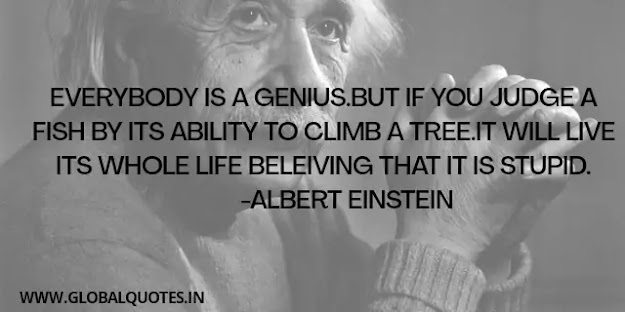 Everybody is a genius. Though if you judge a fish by its ability to climb a tree. It will live its whole life believing that it is fooling.