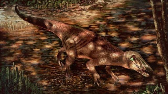 Descubren una nueva especie de gigantesco dinosaurio carnívoro en Argentina