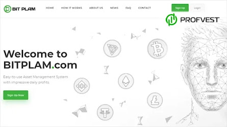 🥇BitPlam.com: обзор и отзывы [Кэшбэк 5% + Страховка 1000$]