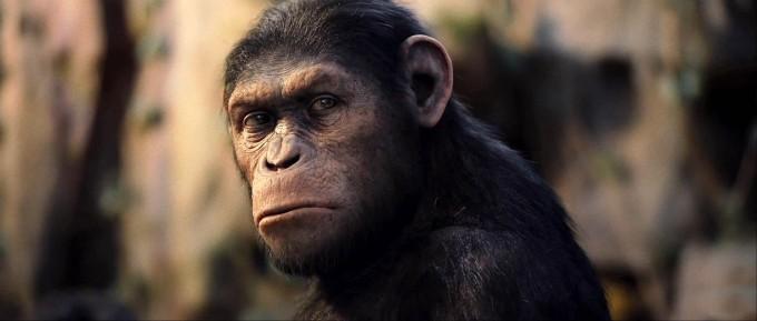 A majmok bolygója: Lázadás / Rise of the Planet of the Apes [2011]