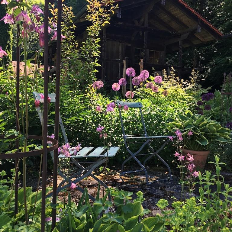 Pflanzen Für Schattengarten Wohn Design