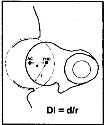 Hip Joint Dysplasia pada Hewan