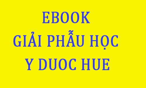 ebook bài giảng giáo trình giải phẫu học pdf toi hoc y