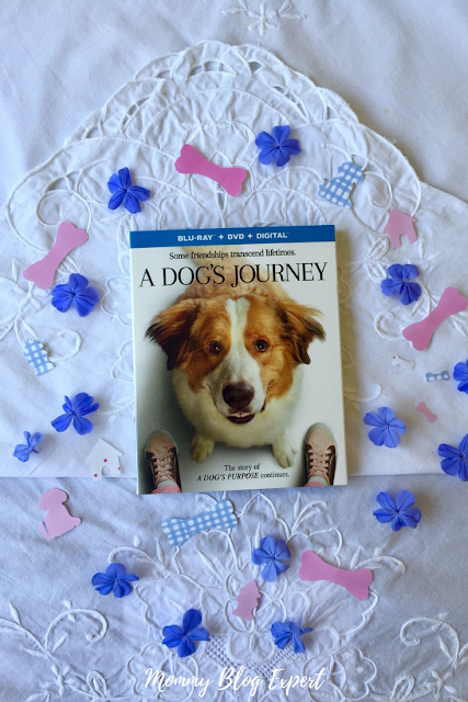 A Dogs Journey Bluray Movie Giveaway