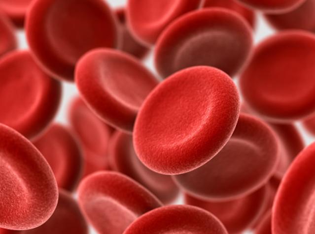 Komposisi Darah Dalam Tubuh Manusia Plasma Darah Plasma darah adalah bagian darah yang berupa cairan. Plasma darah tersusun atas beberapa komponen. Hampir setengah dari volume darah manusia berupa plasma darah, yaitu sekitar 55% dari volume keseluruhan.   Plasma darah berisi 91% berupa air, dan sisanya berupa sari-sari makanan, garam mineral, maupun sisa-sisa metabolisme. Sedangkan 7%-nya berupa protein darah. Plasma darah tersusun atas beberapa unsur, antara lain : Air Air berfungsi melarutkan zat-zat yang terlarut dalam plasma darah seperti glukosa yang digunakan oleh sel-sel tubuh sebagai sumber energi, asam amino, serta ion-ion lain (natrium dan klor).  Protein Protein yang merupakan molekul penyusun plasma darah. Protein menyumbang sekitar 7% bagian dalam penyusunan plasma darah. Molekul protein tersusun atas : Globulin yang berfungsi mengatur distribusi vitamin, lemak, serta hormon dalam tubuh. Selain itu, globulin juga mampu menghasilkan protombin dan zat antibodi sebagai sistem imun (kekebalan) tubuh. Fibrinogen yang berperan dalam menghentikan perdarahan bila terjadi luka. Caranya yaitu dengan membekukan darah. Albumin berfungsi untuk mengatur volume darah, menjaga keseimbangan pH dalam darah, serta menjaga keseimbangan kadar air dalam darah. Dalam plasma darah keberadaan serum albumin sekitar 4%. Antitoksin yang berperan untuk menetralisir toksin (racun) yang masuk ke dalam tubuh. Caranya yaitu dengan menyatu dengan toksin yang dihasilkan oleh bakteri sehingga toksin menjadi tidak berbahaya. Opisimin berfungsi untuk menopang tugas leukosit yaitu mematikan mikrorganisme asing yang masuk ke dalam tubuh (bersifat fagosit). Serum plasma darah berfungsi sebagai antibodi.  Garam Mineral Berbagai garam mineral seperti NaCL, KCl, dan garam fosfat. Garam-garam ini berfungsi untuk menjaga keseimbangan tekanan darah, menjaga pH darah, serta mengatur daya serap membran sel.  Hormon Hormon yang berfungsi dalam merangsang serta meningkatkan fungsi kerja alat-alat tubuh.