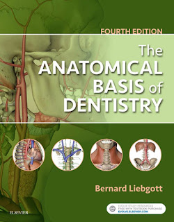 The Anatomical Basis of Dentistry 4th Edition by Bernard Liebgott