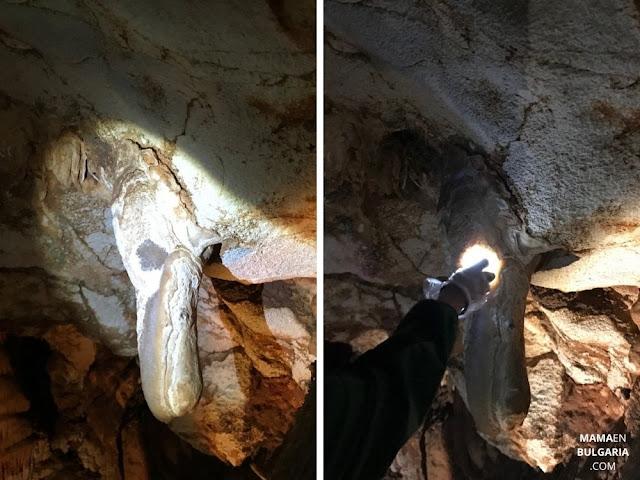 pelícano cueva Venetsa Bulgaria