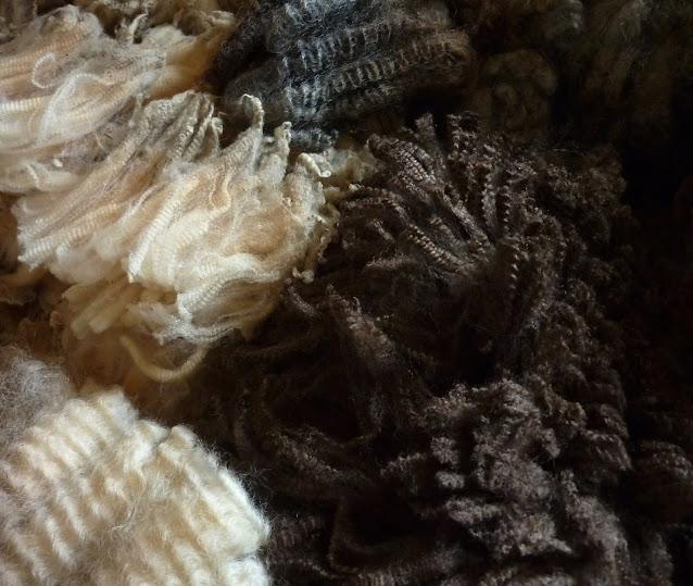 Wool crimp, Photo: The Spinning Shepherd