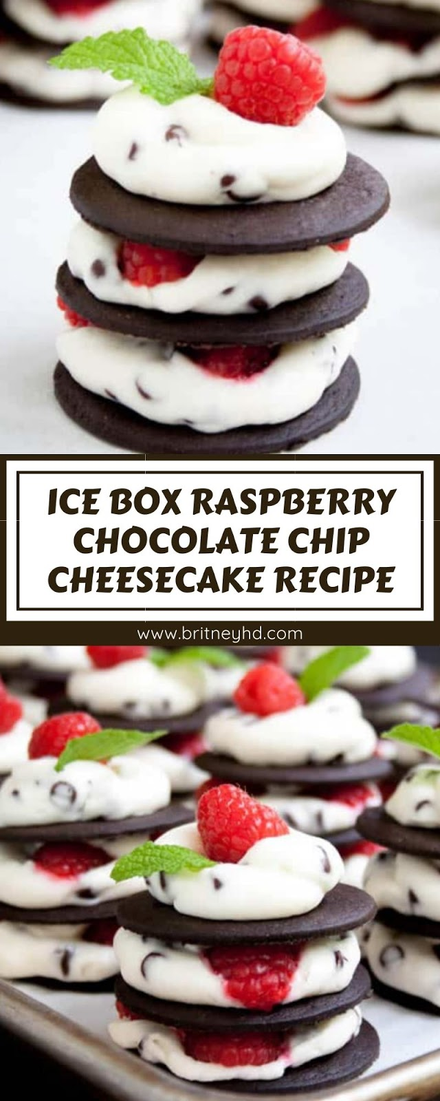ICE BOX RASPBERRY CHOCOLATE CHIP CHEESECAKE RECIPE