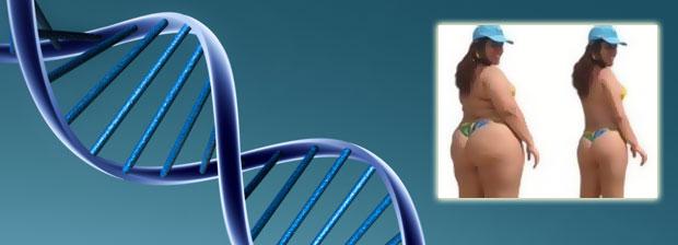 Генетика питания: от омега-3 до крахмалов, кому и сколько?