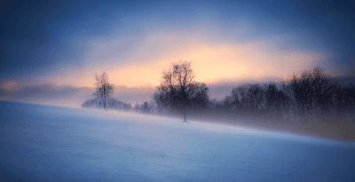Pemandangan Alam Salju Pohon