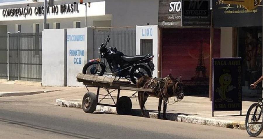 Moto em cima de carroça de burro provoca indignação em Petrolina (PE)