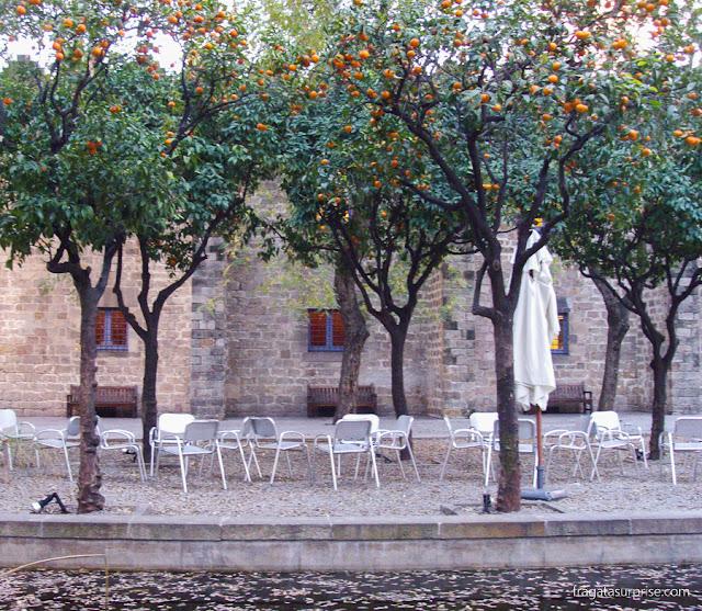 Jardins do Museu Marítimo de Barcelona