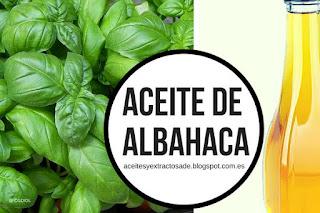 Aceite esencial de albahaca en listado de aceites y esencias para Aromaterapia