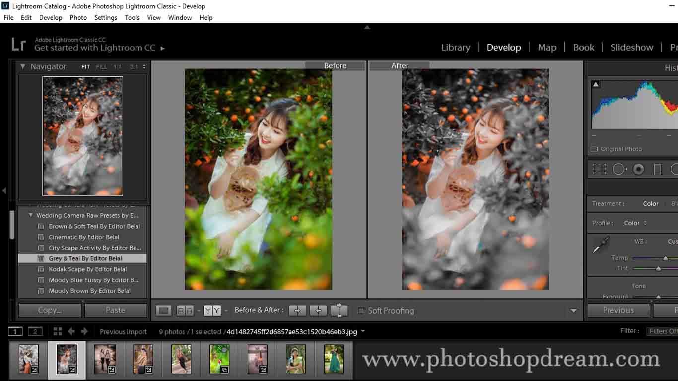 Wedding Lightroom Presets Free Download | Wedding Presets