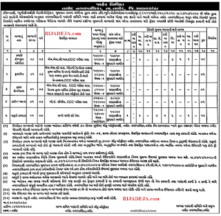 Talod Nagarpalika Job 2020