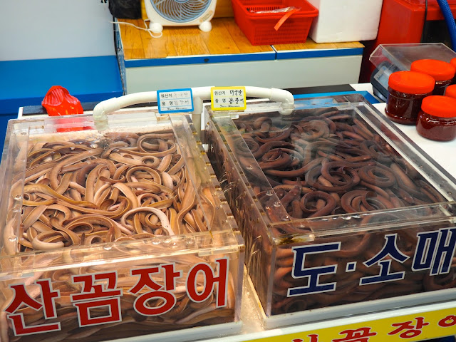 Tanks of eels in Jagalchi Market, Nampo-dong, Busan, South Korea