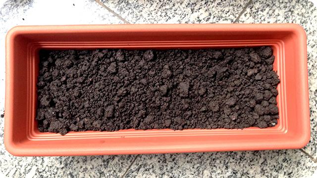 Horta em Apartamento : Como Preparar uma Jardineira