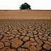 Aesa diz que sete açudes paraibanos estão com volume de água 'zerado'; confira