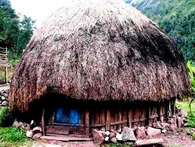gambar rumah adat suku papua