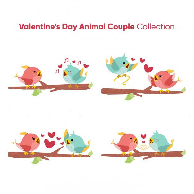 Valentine bird couple collection Free Vector
