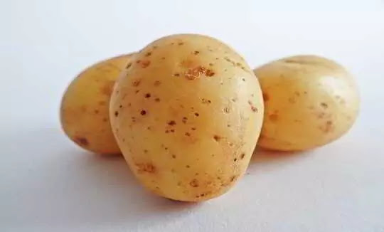 Eating potatoes is of tremendous benefit, it also outperforms these diseases