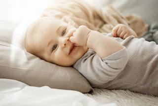 Beberapa Mitos Yang Berkembang Tentang Makanan Bayi