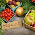 Peluang Usaha budidaya sayuran Organik
