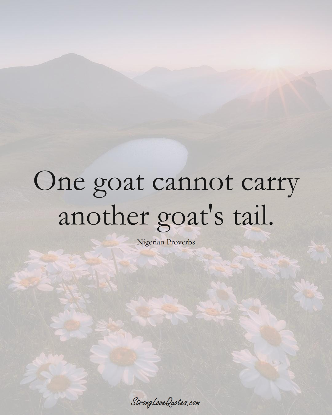 One goat cannot carry another goat's tail. (Nigerian Sayings);  #AfricanSayings