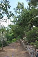 chalet en venta masia gaeta borriol jardin9
