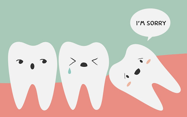 What To Expect From A Dentist For Your Dental Health?