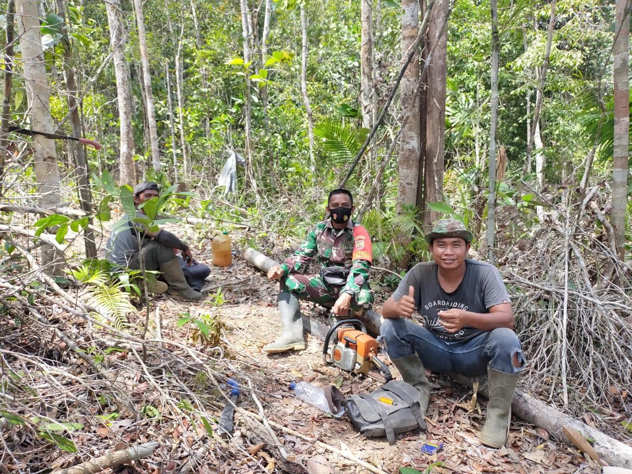 Babinsa Desa Air Lengit Laksanakan Komsos Dengan Warga Penebang Kayu