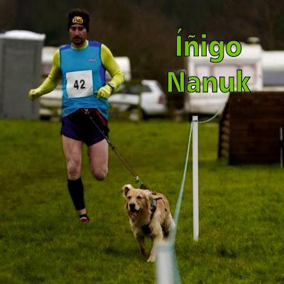 Iñigo - Nanuk