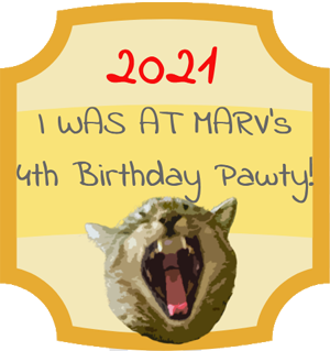 We Partied at Marv's Birthday!