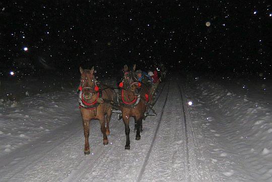 Pędzą konie przez ciemną dolinę.