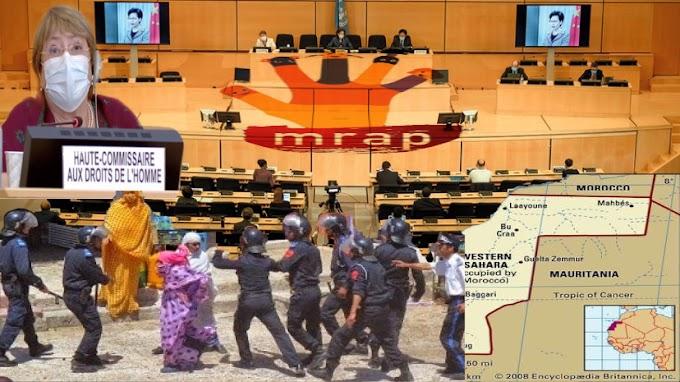 منظمة فرنسية تحذر الهيئات الأممية من عواقب إعتماد أنشطة مؤسسات مغربية تساهم في ترسيخ الإحتلال بالصحراء الغربية