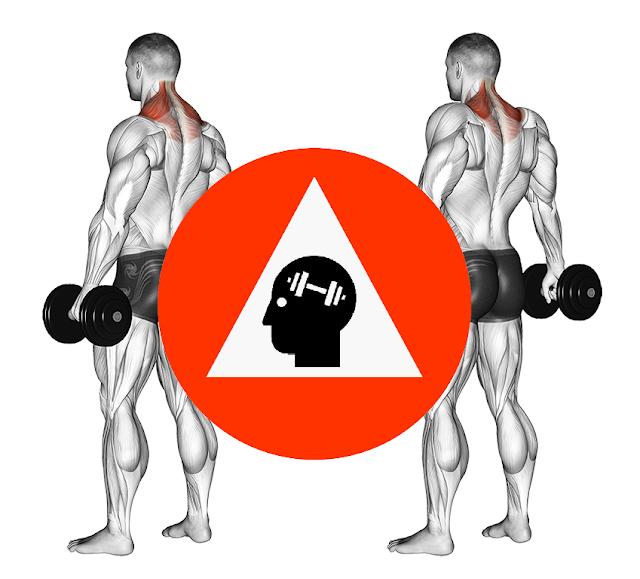 musculation cou et trapeze avec shrugs