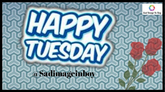 Happy Tuesday images   good morning tuesday quotes, funny tuesday pictures, images of happy tuesday