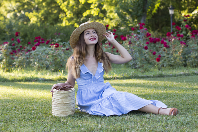 adina nanes picnic outfit