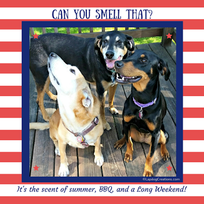 Can You Smell That?  It's of summer, bbq and a long weekend!  The Lapdogs are ready - are you? #RescueDog #AdoptDontShop #Summer #LongWeekend ©LapdogCreations