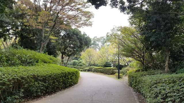 Tsukuba, Kota Ilmu Pengetahuan di Jepang