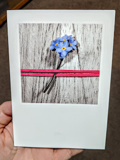 Forget-Me-Not Card from the Vets after our Cat Moses had to be put down