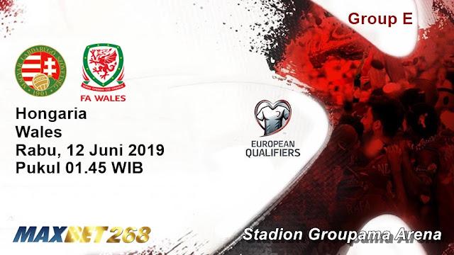 Prediksi Hongaria Vs Wales, Rabu 12 Juni 2019 Pukul 01.45 WIB