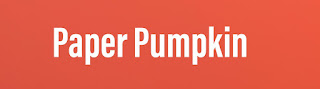 Learn More about Paper Pumpkin Craft Kits