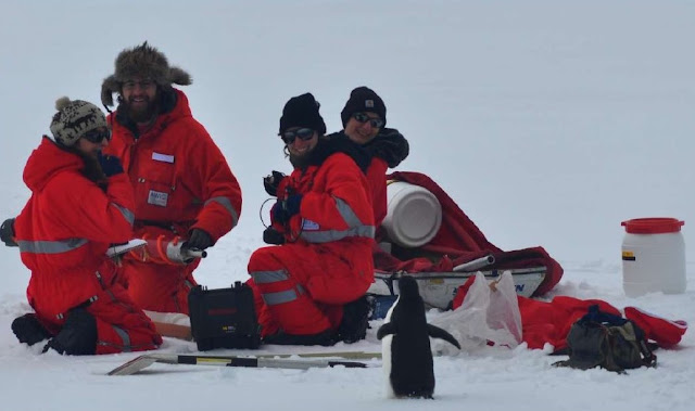 Researchers setting up equipment in Antartica say hello to a curious penguin. No Kicking Penguins and other stories about penguins. marchmatron.com