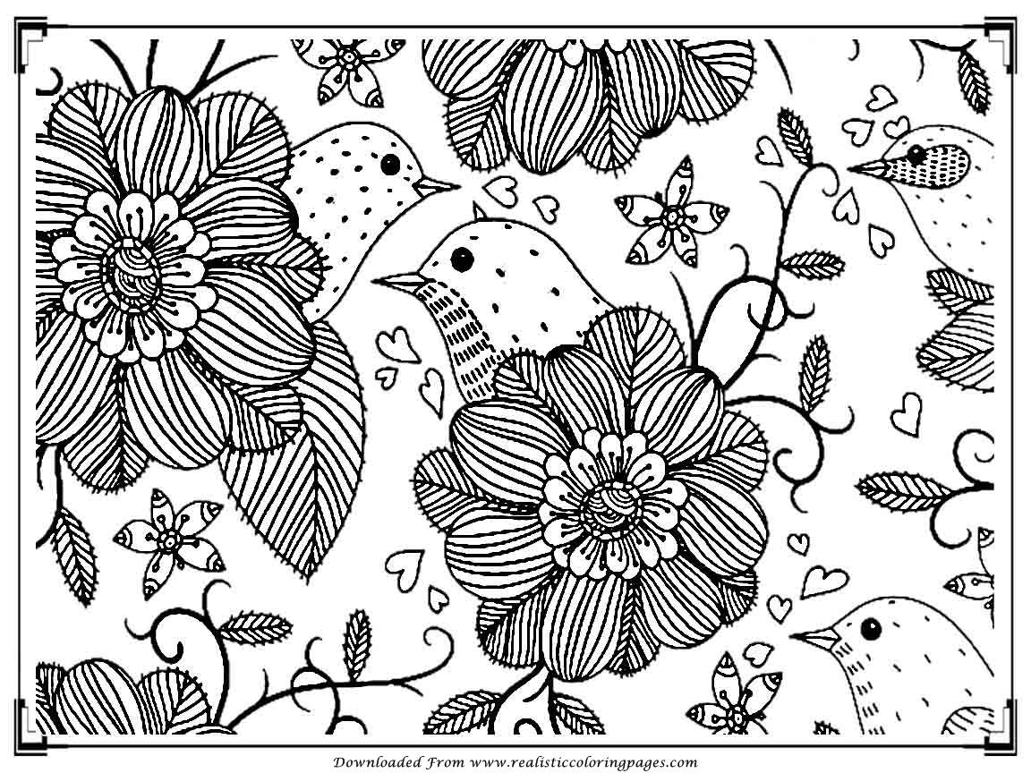 Printable Birds Coloring Pages For Adults  Realistic -6231