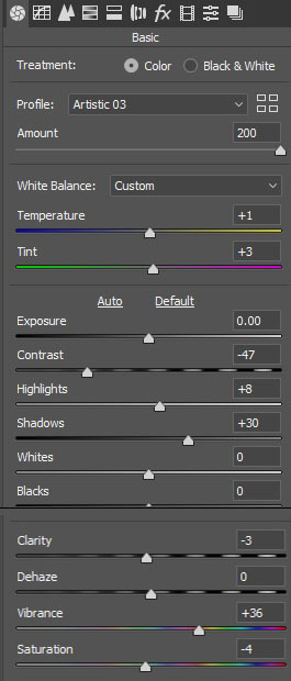FREE Read Tone Preset - How To Make Photoshop Presets