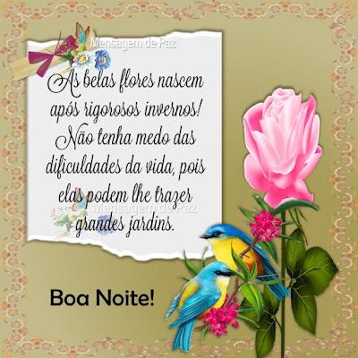 As belas flores nascem após rigorosos invernos! Não tenha medo das dificuldades da vida, pois elas podem lhe trazer grandes jardins. Boa Noite!