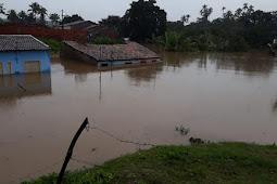 Imóveis invadidos por água da chuva devem ser higienizados corretamente