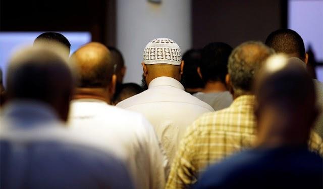 الطريق إلى عز المسلمين عند الإمام الألباني